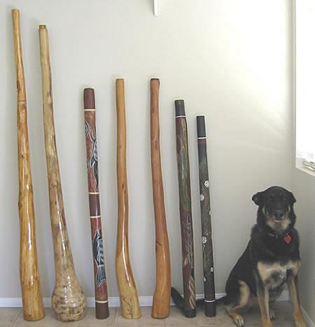 Didgeridoo,didjeridu,didjeridoo,Aboriginal Musical Instrument,